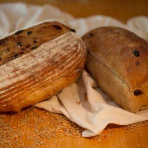 True Grain Bread made with 100% Organic BC Flour